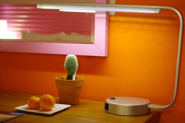 Saguaro Orange Room